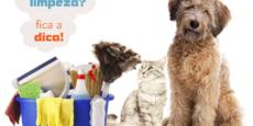 produtos-limpeza-fabuloso-mundo-pets